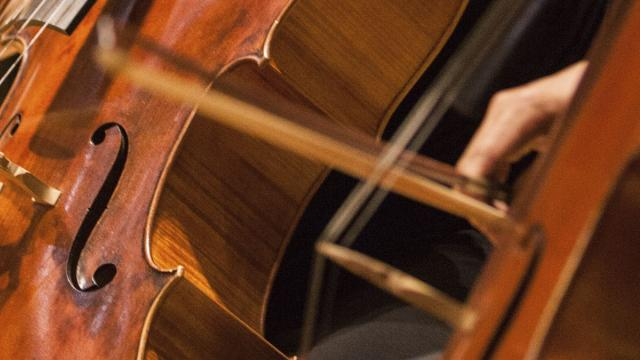 A close picture of the middle section of a cello while the bow moves across the strings