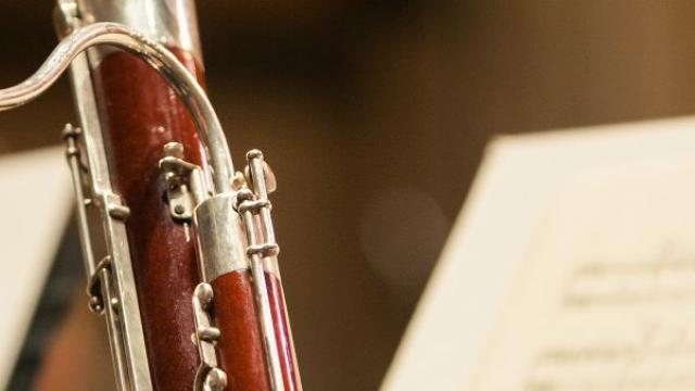 Close-up of bassoon