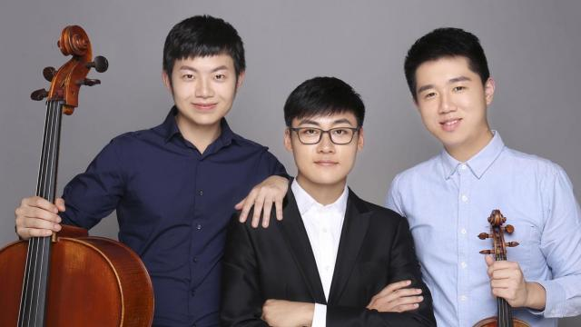 A violinist, a pianist, and a cellist